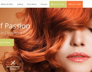 hair salon web design sample - orange