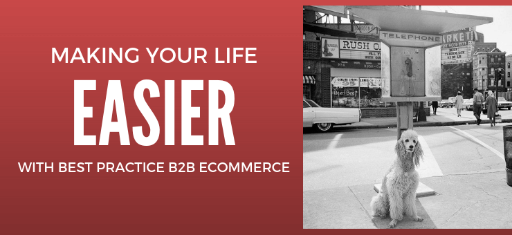 Making Your Life Easier with Best Practice B2B eCommerce