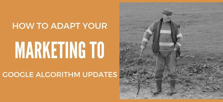 How to Adapt Your Marketing to Google Algorithm Updates
